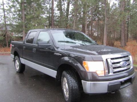 Pre-Owned 2010 Ford F-150 XLT FLEXFUEL 4X4